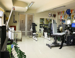 personal training area Physiotherapy Corfu